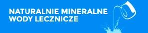 Naturalne_Mineralne_Wody_Lecznicze__logo