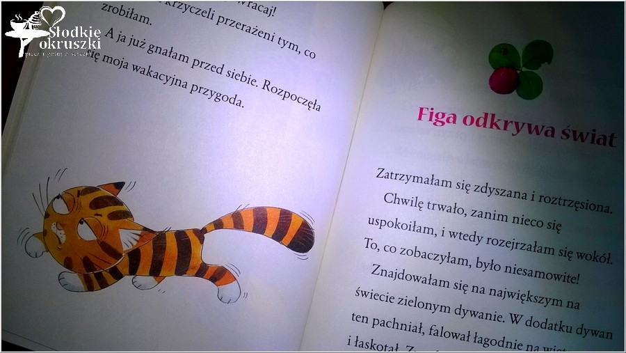 Figa na wakacjach Wyd. Skrzat. Recenzja książeczki dla dzieci. (3)
