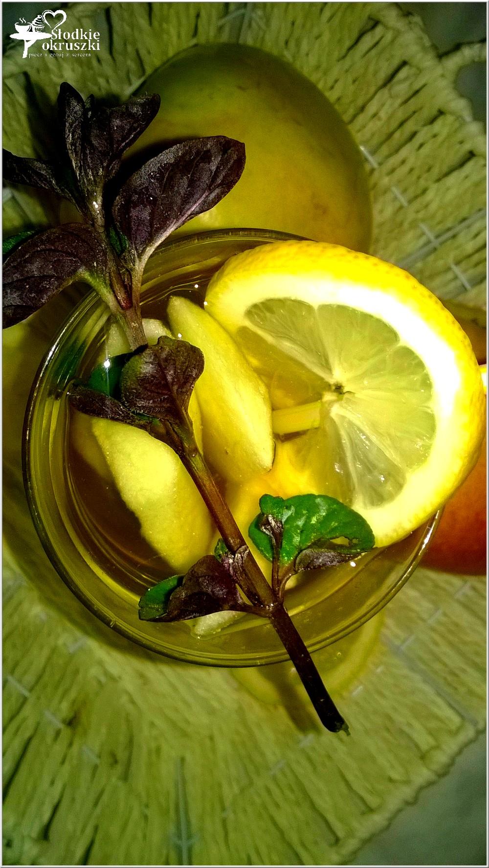 mietowo-gruszkowy-napoj-z-kawalkami-owocow-2