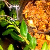 szybka-cynamonowa-granola-z-suszonym-jablkiem