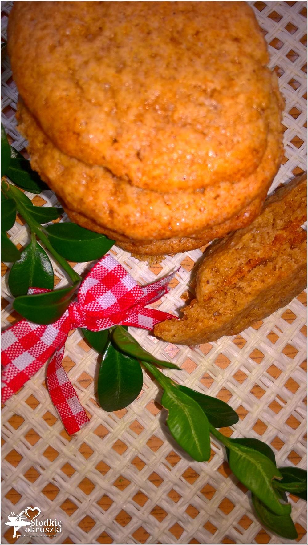 ekspresowe-ciasteczka-cynamonowe-3