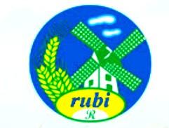 Logo_rubi