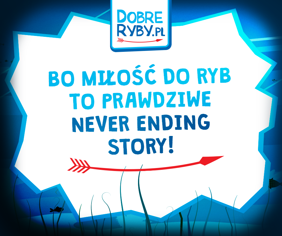 dobreryby.pl