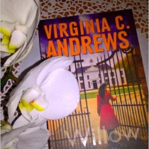 Książka na weekend. Willow. Virginia C. Andrews