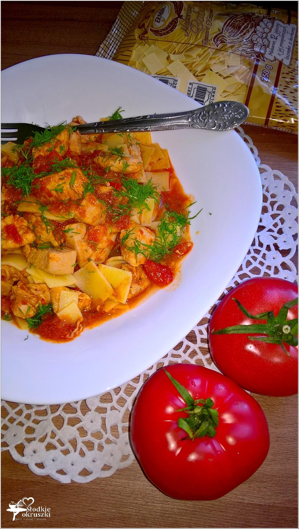 Piersi z kurczaka w sosie pomidorowo-parykowym z makaronem (3)