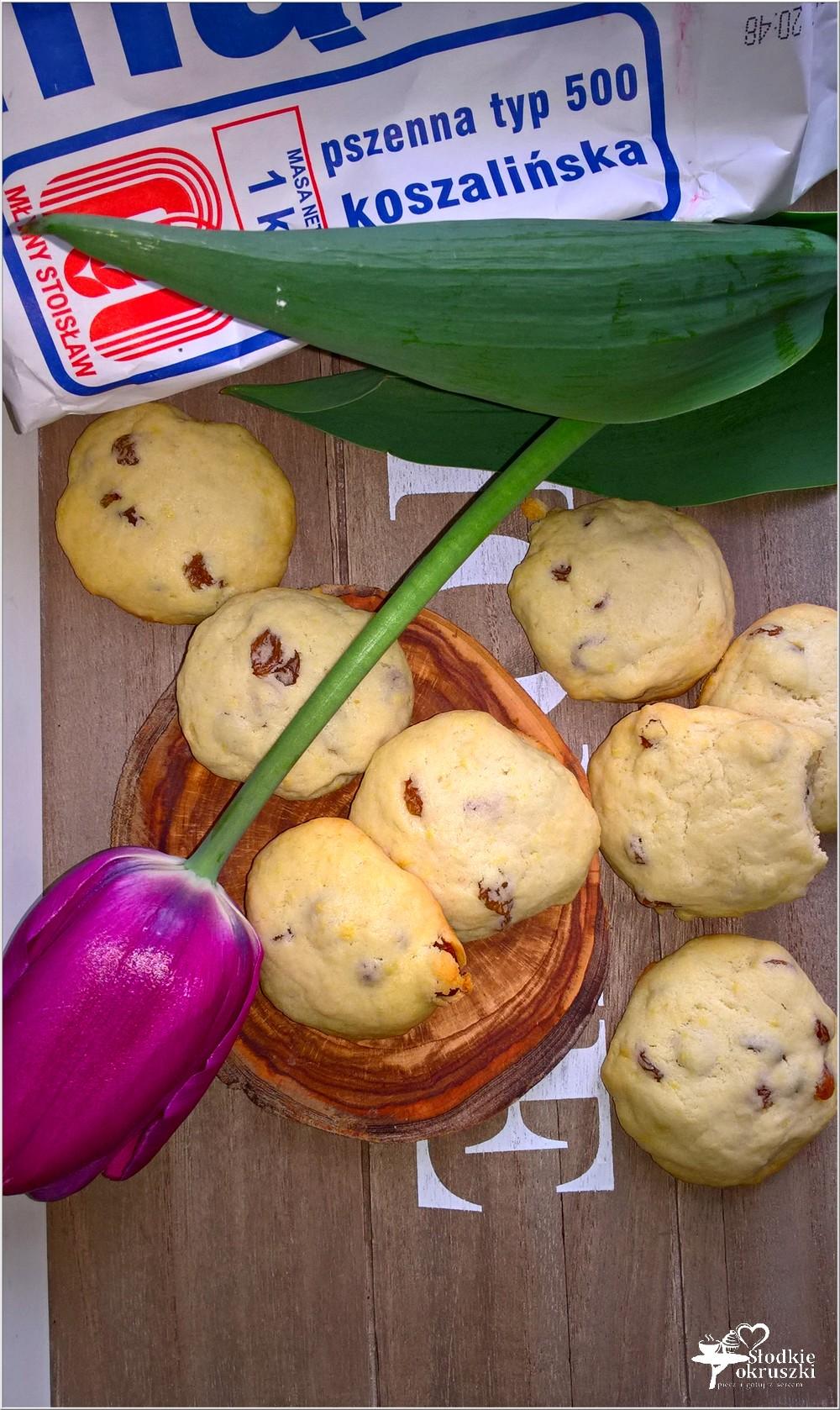 Proste ciasteczka z rodzynkami (2)