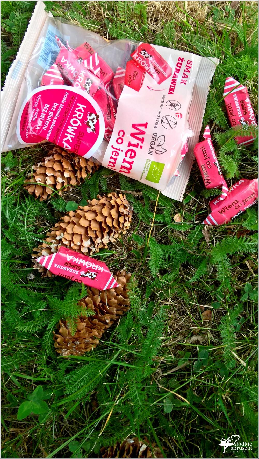 Super krówka - zdrowe i pyszne słodkości (5)