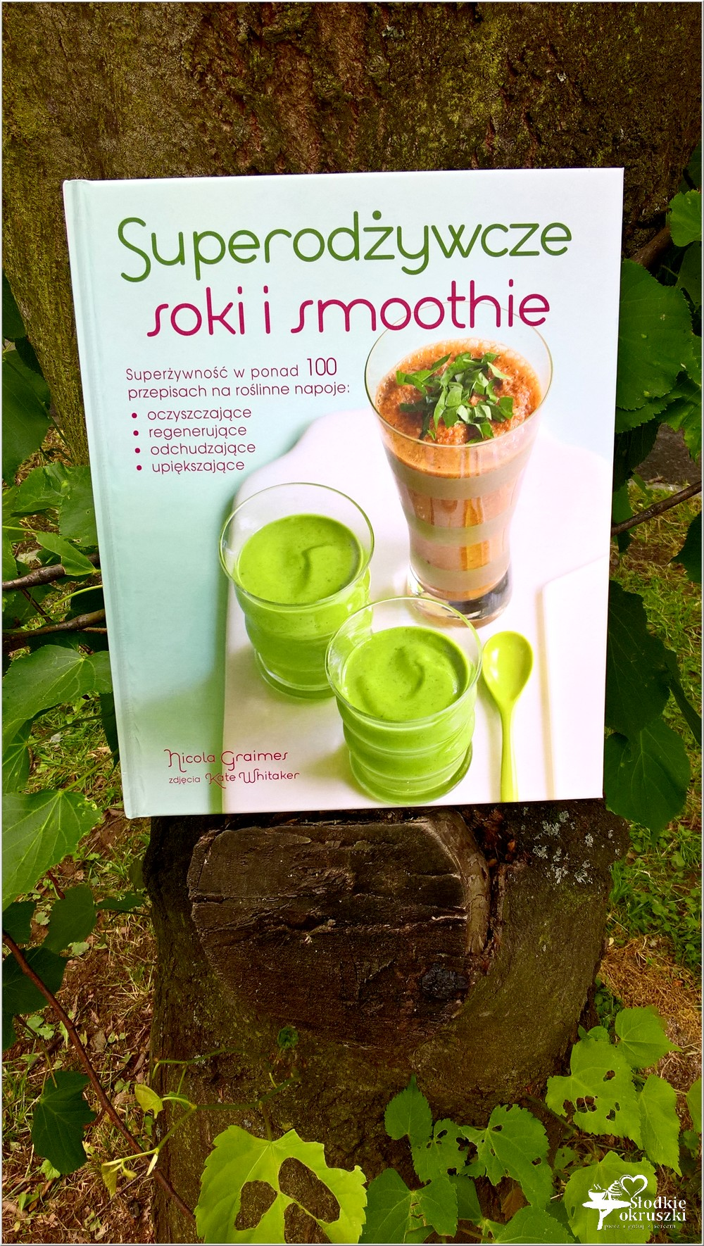 Superodżywcze soki i smoothie (1)