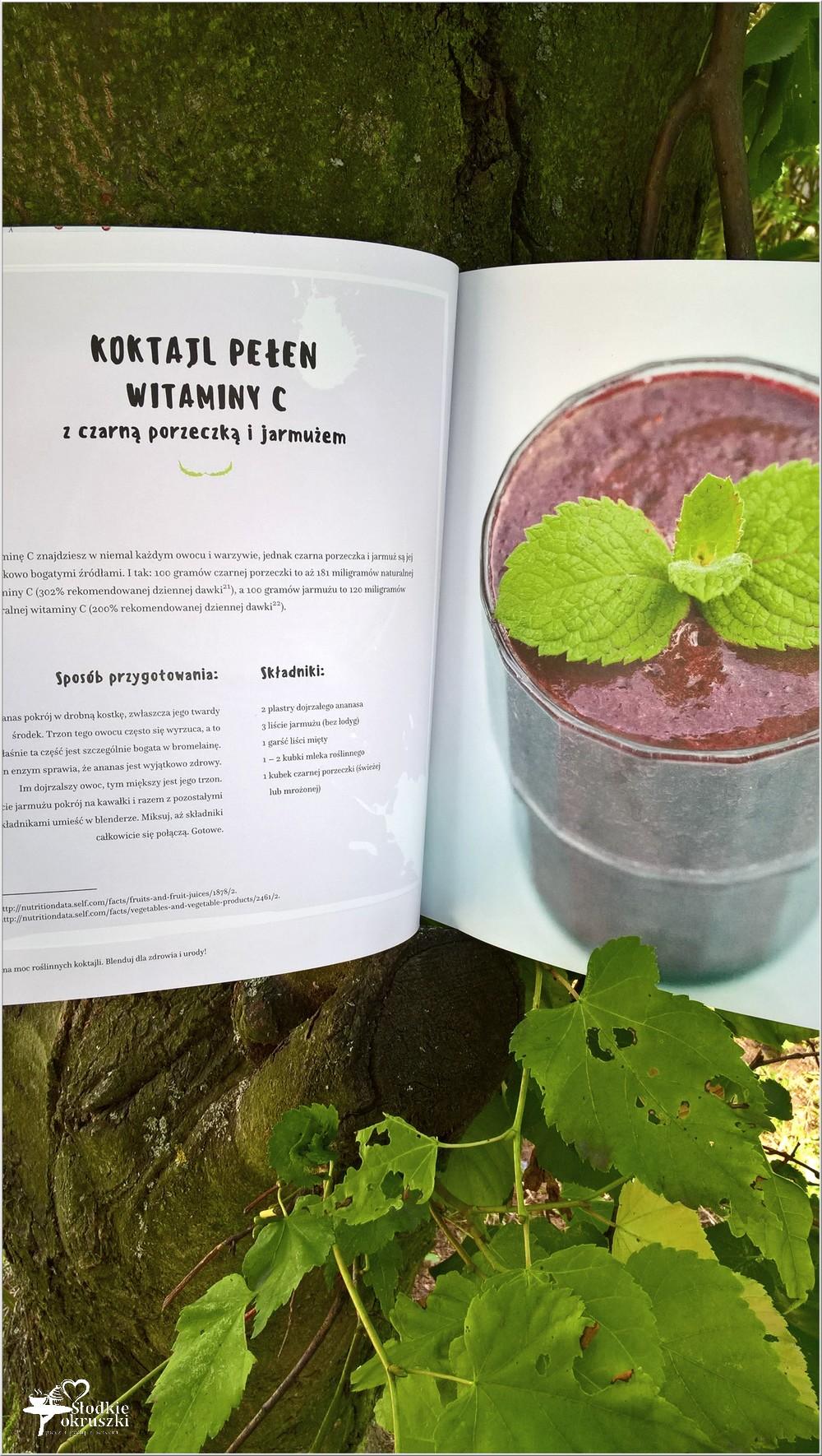 Cudowna moc roślinnych koktajli. Recenzja (2)