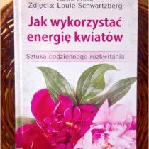 Jak wykorzystać energię kwiatów. Recenzja (1)