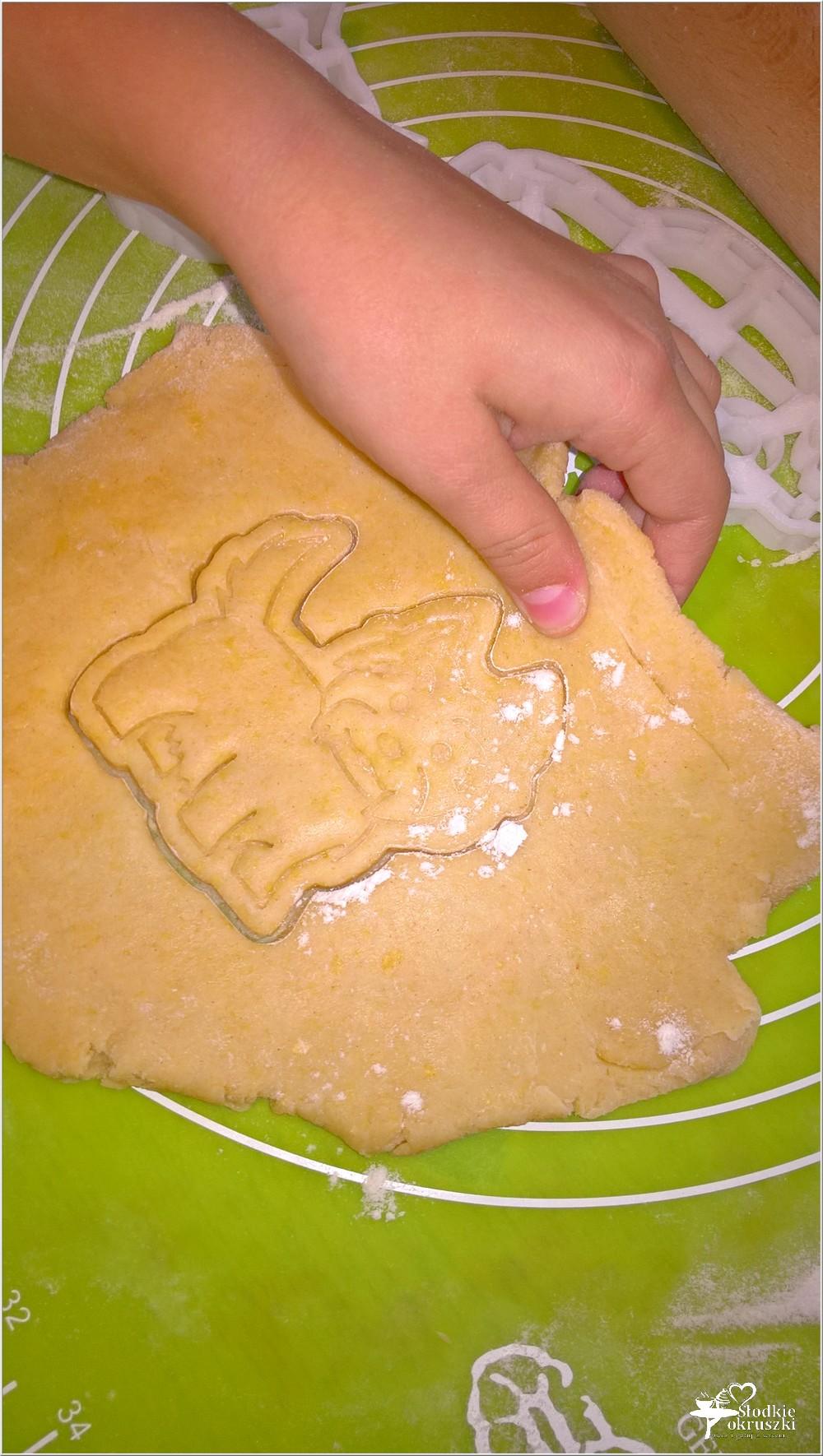 Delikatnie pomarańczowe ciasteczka i KONKURS z Protonik (3)