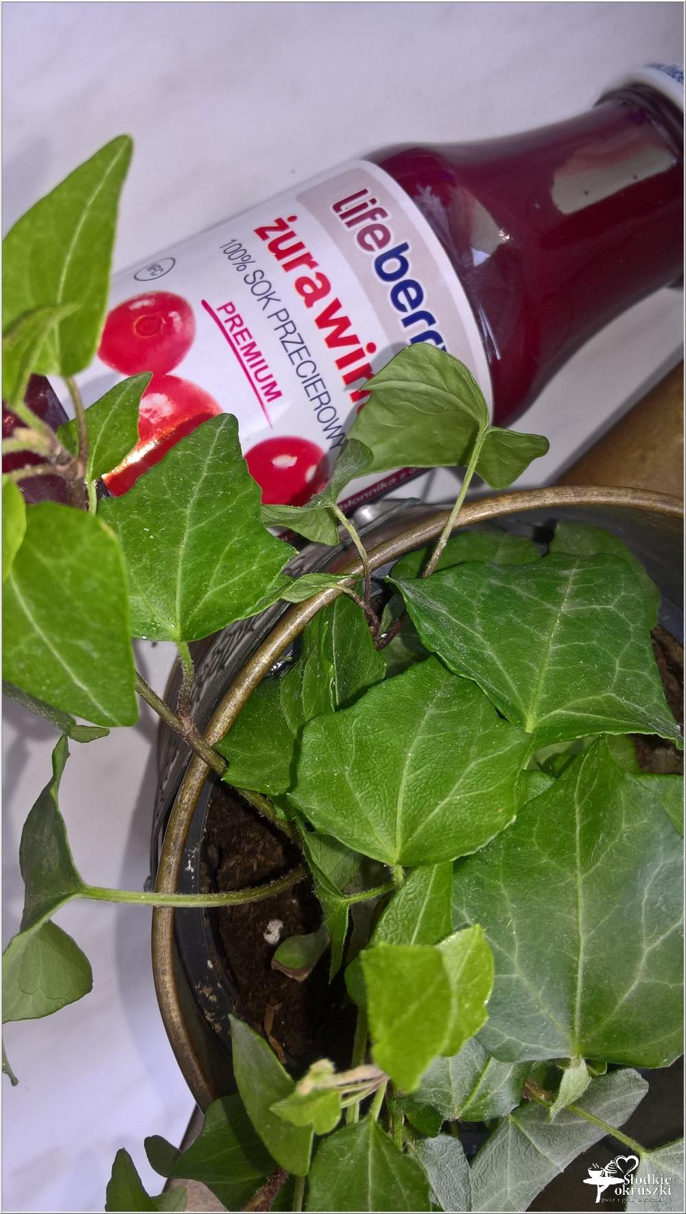 LIfeberry żurawinowy