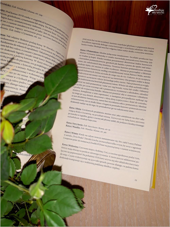 Leksykon smaków Niki Segnit. BIBLIA KAŻDEGO SMAKOSZA! (4)