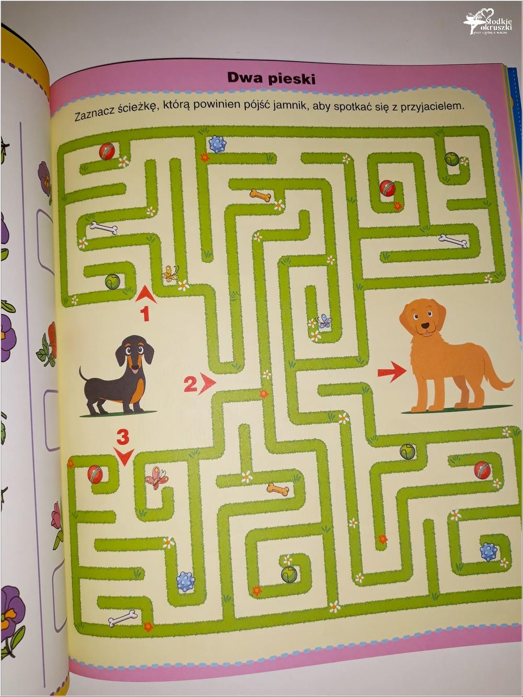 Jak połączyć zabawę z nauką. Książka Dla bystrzaków. 202 zagadki (3)