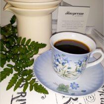 Slowpresso - sposób na dobrą kawę bez pośpiechu (3)