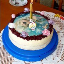Tort urodzinowy mojej 6-latki (1)