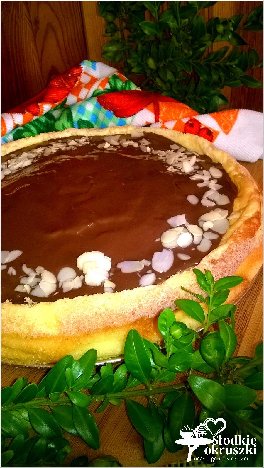 Delikatny sernik z rodzynkami i czekoladową polewą (1)