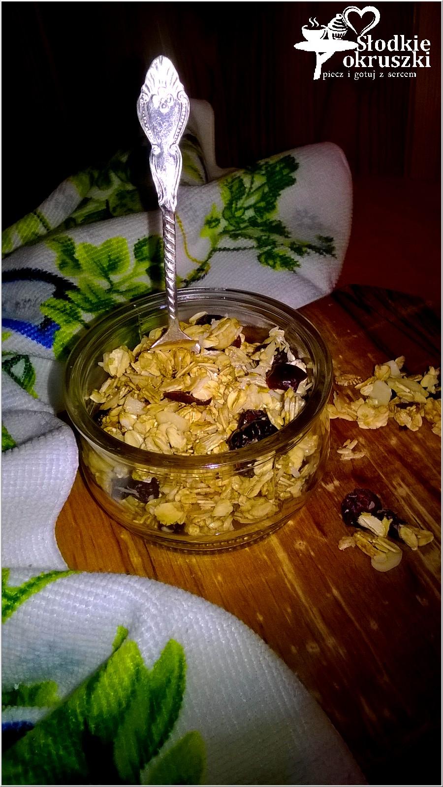 Domowa granola w kilka chwil (1)