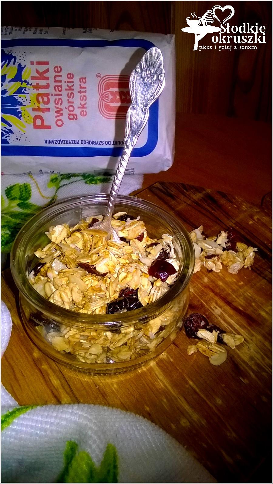 Domowa granola w kilka chwil (2)