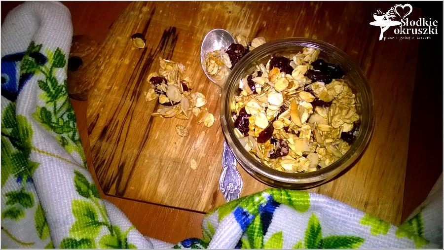 Domowa granola w kilka chwil (3)