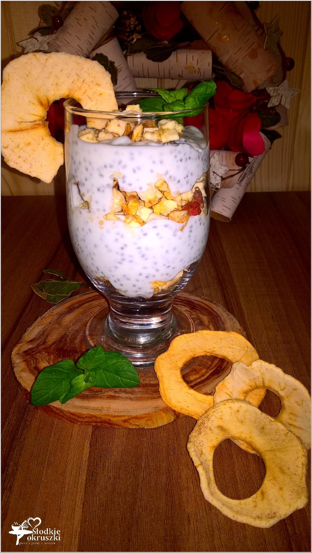deser-pelen-zdrowia-z-chia-i-suszonym-jablkiem-poznajcie-swiat-amkez-2