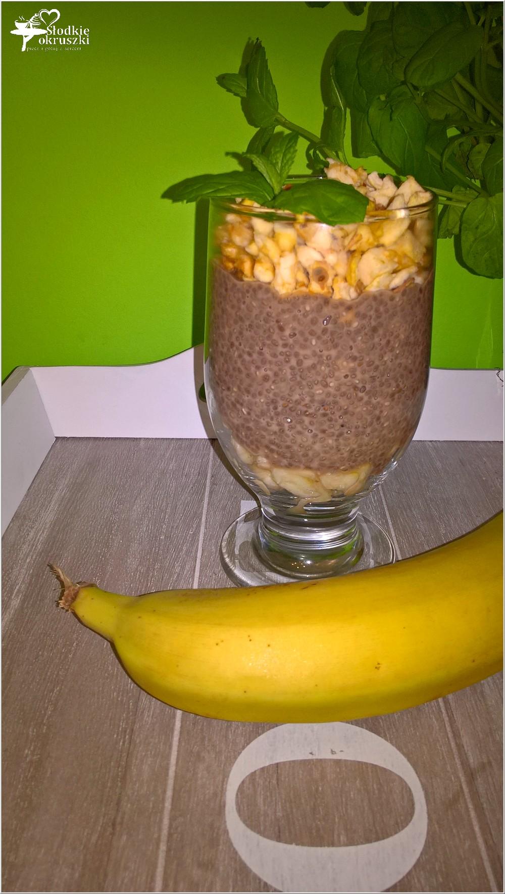 Owsiany deser chia z suszonym jabłuszkiem i bananem (3)
