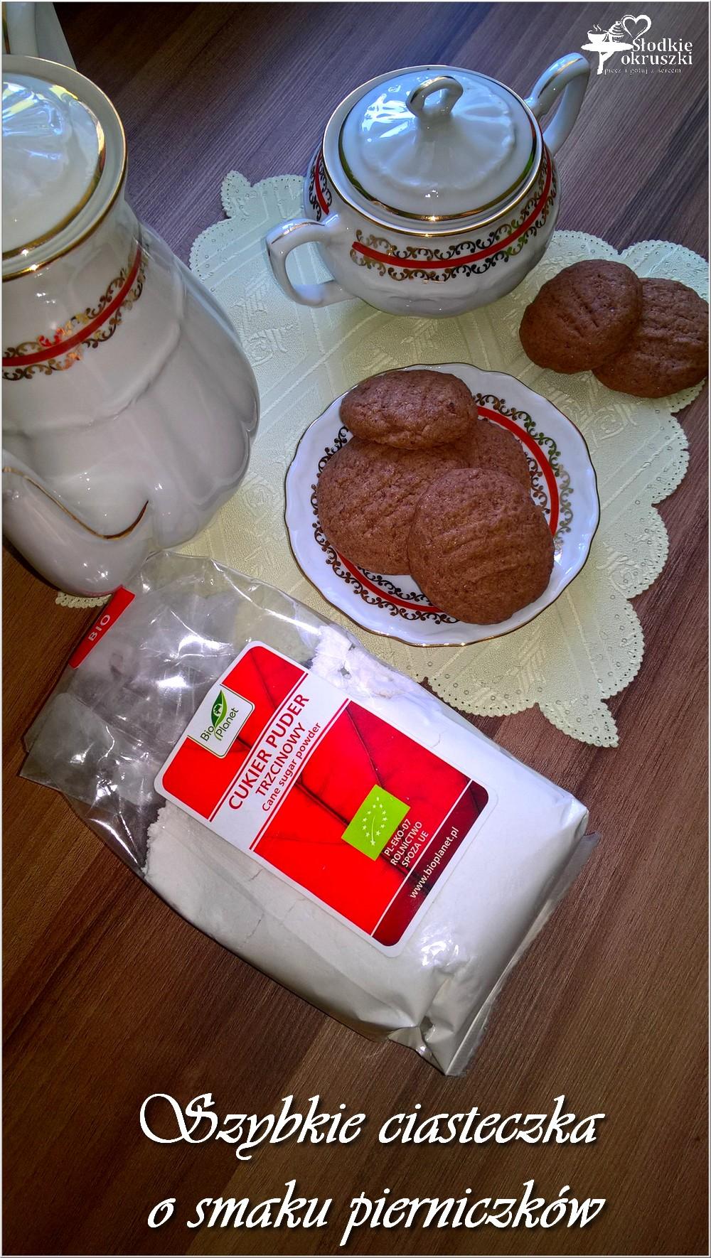 Szybkie ciasteczka o smaku pierniczków (3)