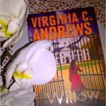 Książka na weekend. Willow. Virginia C. Andrews