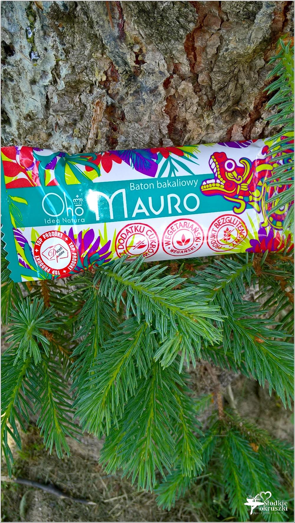 Naturalnie, zdrowo i smacznie - batony Oho Idea Natura (2)