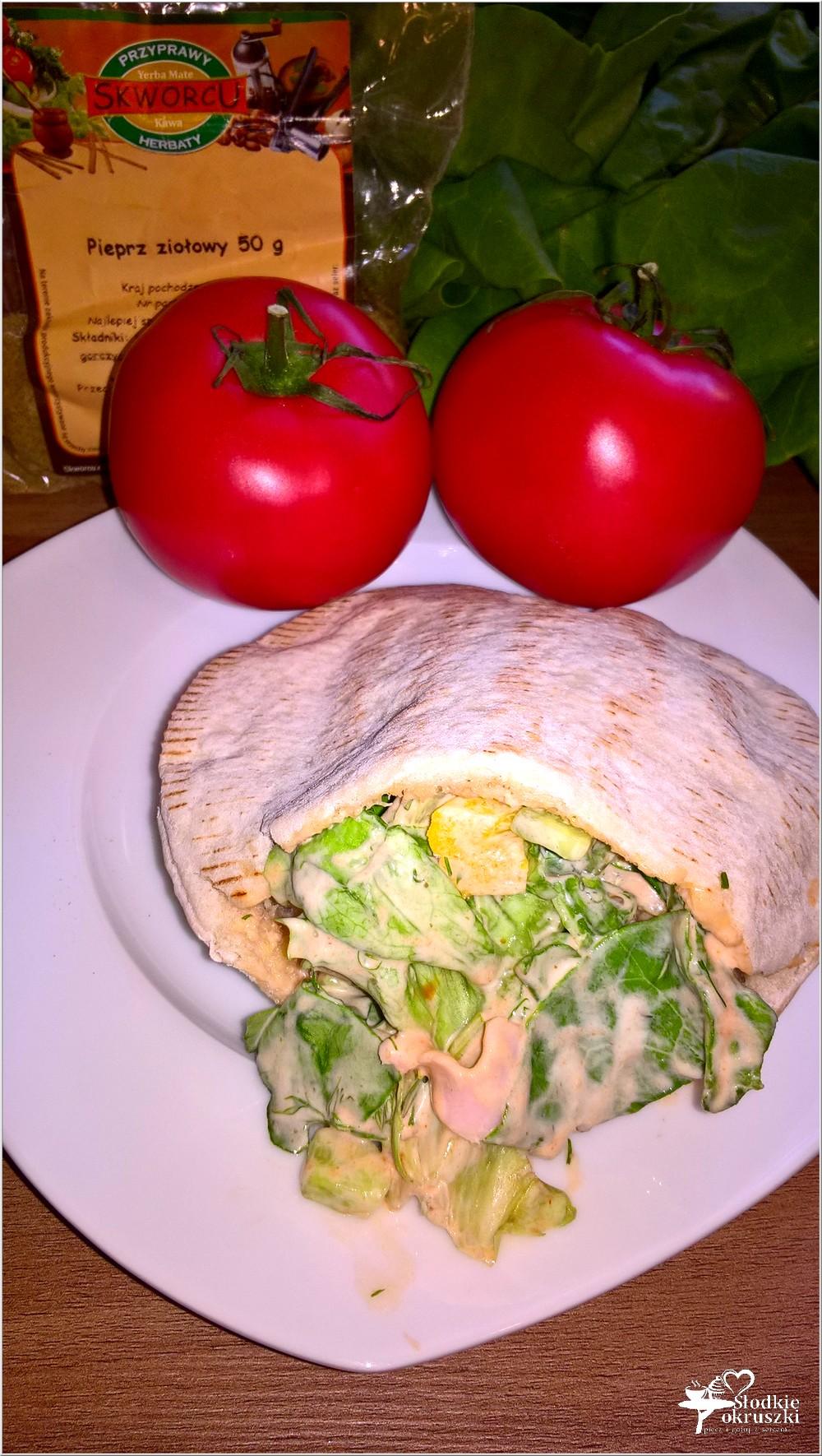 Pita z wędliną, ogórkiem i papryką w czosnkowo pikantnym sosie (2)