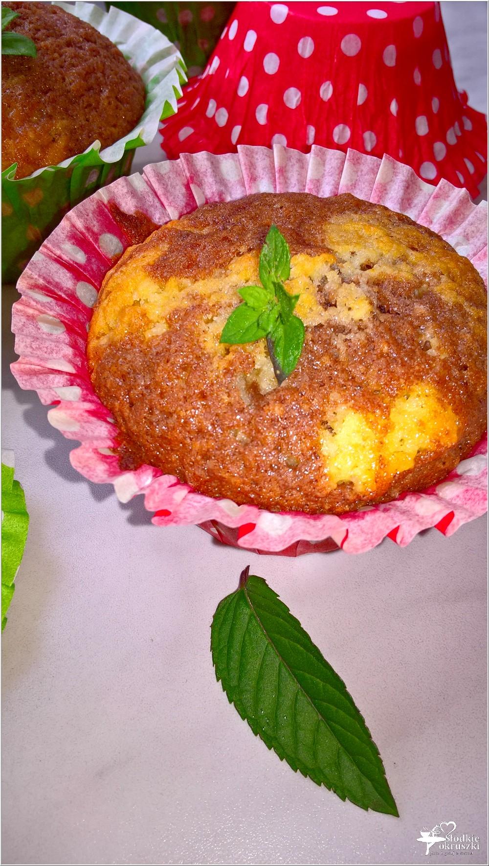 Łaciate kokosowo-czekoladowe babeczki (2)