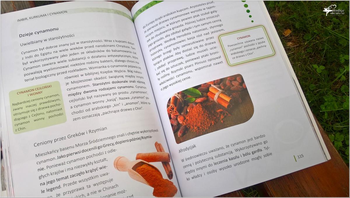 Aromatyczne przyprawy. Imbir, kurkuma, cynamon (3)