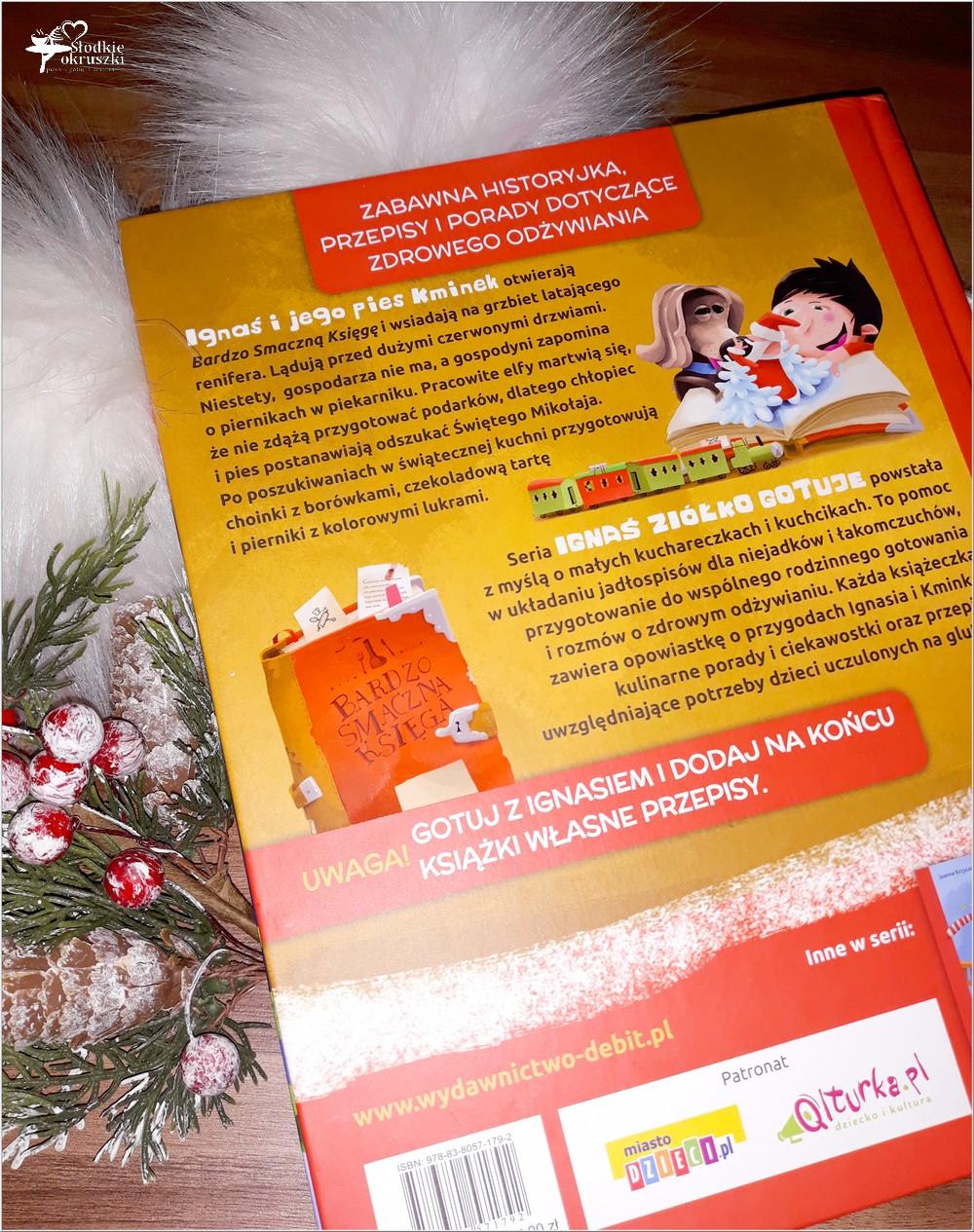 Ignaś Ziółko gotuje. Przygoda u Świętego Mikołaja. Recenzja (2)