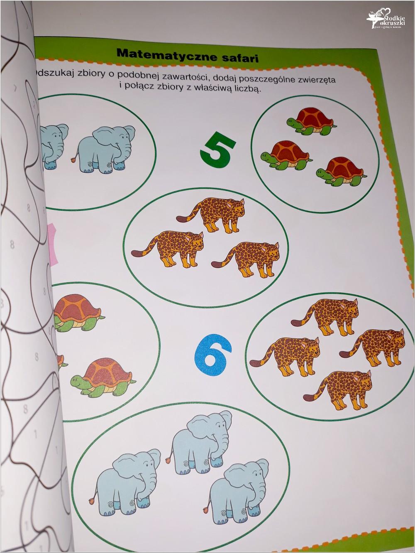 Jak połączyć zabawę z nauką. Książka Dla bystrzaków. 202 zagadki (5)