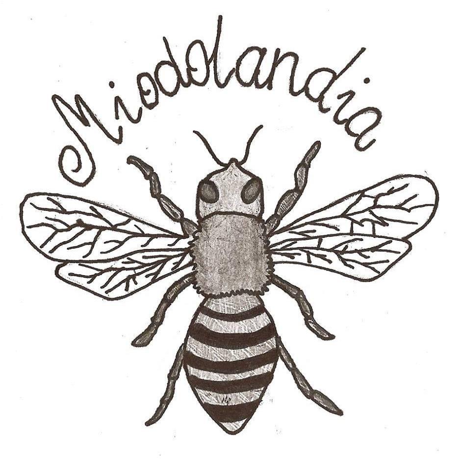 logo_MIODOLANDIA