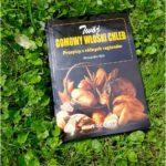 """""""Twój włoski chleb. Przepisy z różnych regionów"""". Recenzja książki Alessandro Valli."""