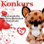 Konkurs! Wygraj maskotkę od TY Polska na Walentynki